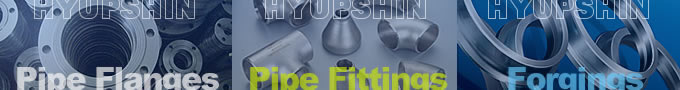 Jinan Hyupshin Flanges Co., Ltd, pipe flange, pipe fittings, catalog